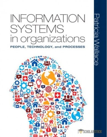Information Systems in Organizations : 0133025756 Solution Manual