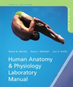 Human Anatomy & Physiology Laboratory Manual 10/E 10th Edition Elaine N. Marieb, Susan J. Mitchell, Lori A. Smith Test Bank