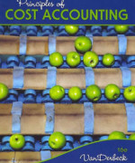 Principles of Cost Accounting 16th Edition by Edward J. Vanderbeck Solution Manual