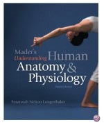 Maders Understanding Human Anatomy and Physiology 7th Edition by Longenbaker Test Bank
