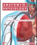 Anatomy and Physiology Foundations for the Health Professions, 1st Edition: Roiger Test Bank