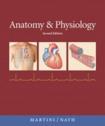 Anatomy and Physiology, 2nd Edition: Martini Test Bank
