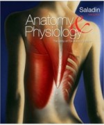 Anatomy & Physiology, 5th Edition: Kenneth Saladin Test Bank