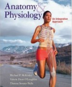 Anatomy and Physiology, 1st Edition: Michael McKinley Test Bank
