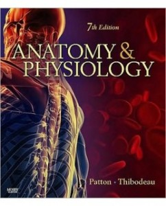 Anatomy and Physiology, 7th Edition: Kevin T. Patton Test Bank