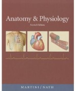 Anatomy & Physiology, 2nd Edition : Martini Nash Test Bank