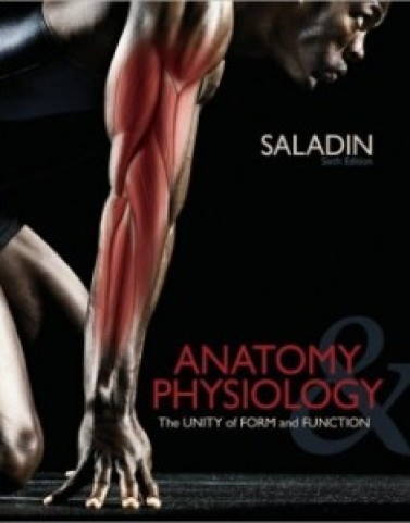 Anatomy and Physiology, 6th Edition: Kenneth Saladin Test Bank