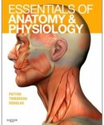 Essentials of Anatomy and Physiology, 1st Edition: Kevin T. Patton Test Bank