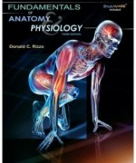 Fundamentals of Anatomy and Physiology, 3rd Edition: Donald C. Rizzo Test Bank