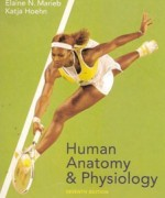 Human Anatomy And Physiology, 7 Revised ed of US ed edition: Elaine Nicpon Marieb Test Bank