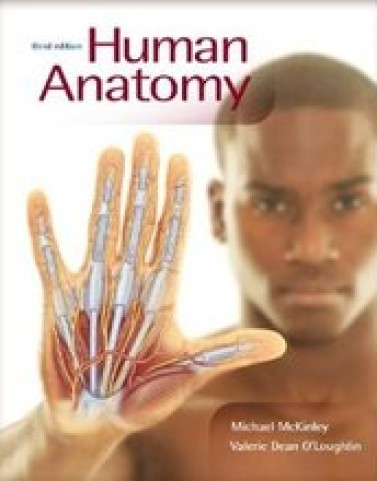 Test Bank for Human Anatomy McKinley 3rd Edition