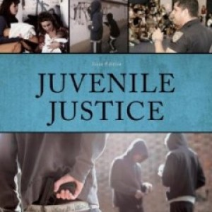 Juvenile Justice, 6th Edition : Hess Test Bank