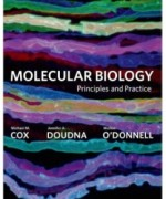 Molecular Biology: Principles and Practice, 1st Edition: Michael M. Cox Test Bank