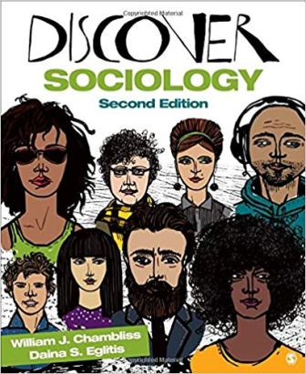 Test Bank for Discover Sociology 2nd Edition Chambliss ISBN-10: 1483365204, ISBN-13: 9781483365206